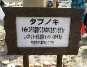 この交流センターのシンボルツリーとなった「タブノキ」の除幕式もありました。